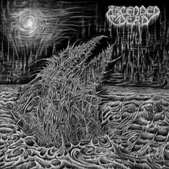 ASCENDED DEAD - Abhorrent Manifestation CD