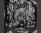 FUNEST - Ascension in Desolation CD