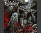 INCINERATE - Eradicating Terrestrial Species CD