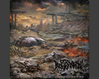 INDETERMINABLE - Symbols That Disappeared CD