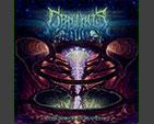 ORPHALIS - The Birth of Infinity CD