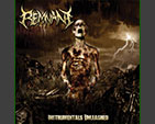 REMNANT - Instruments Unleashed CD