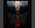 SHRINE OF INSANABILIS -  Disciples of the Void CD