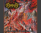 TERMINATE - Ascending To Red Heavens CD